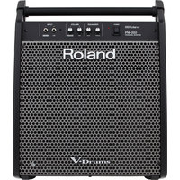 Roland PM-200 Drum Amplifier